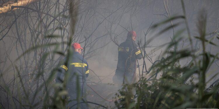 Άμεσα σβήστηκε η φωτιά στη ΒΙΠΕ Πρέβεζας